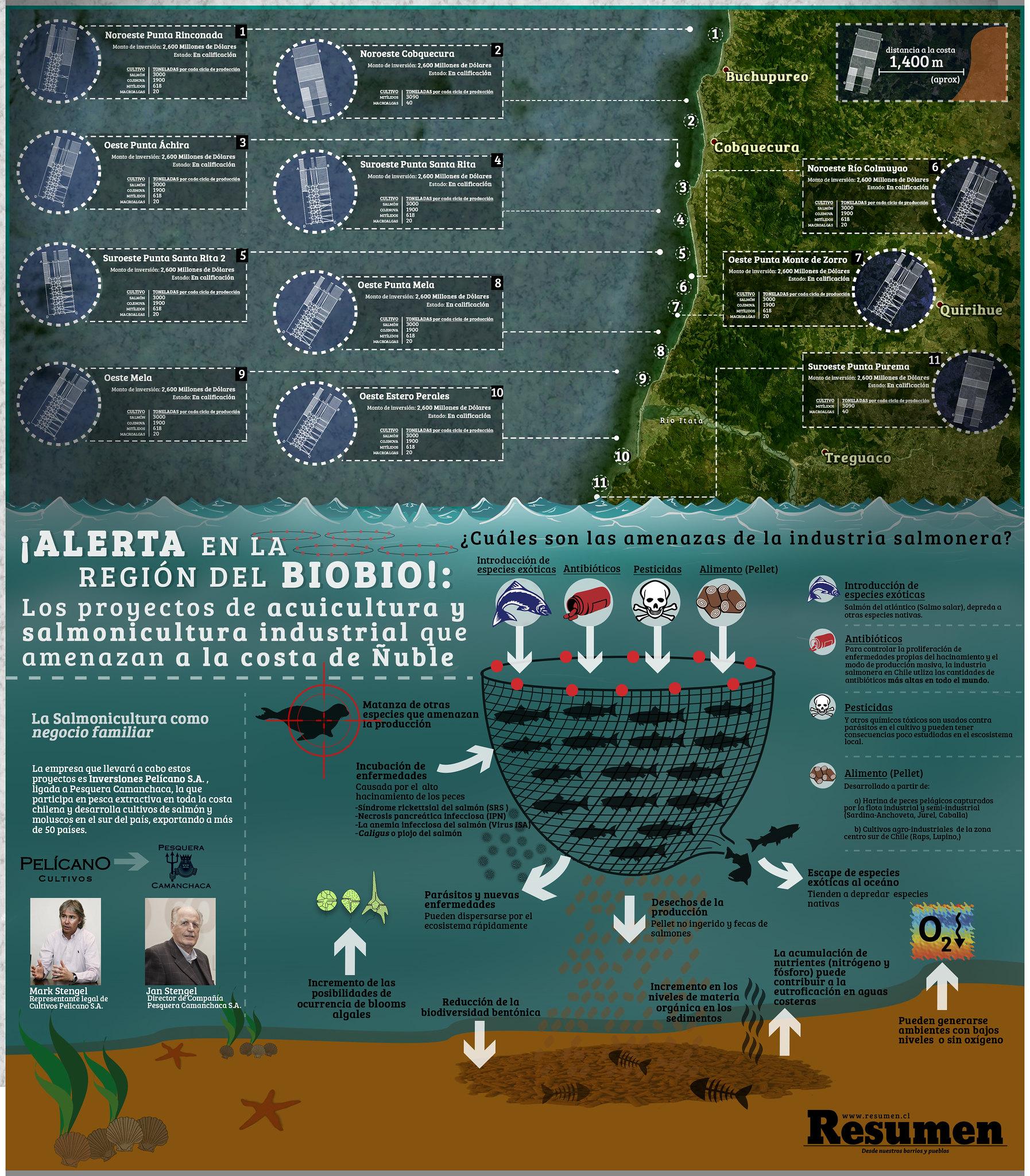 Proyectos de acuicultura industrial en la costa de Ñuble