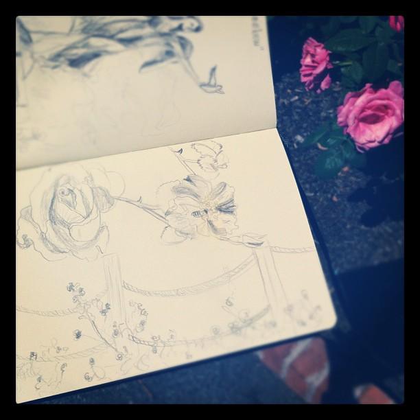 Rose #sketch