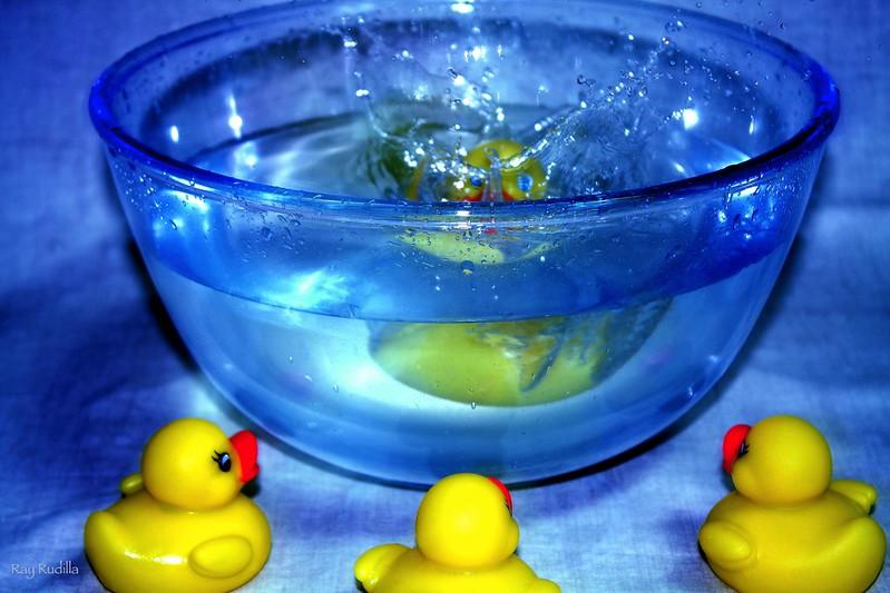 ¡¡Al agua patos!!