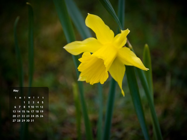 May 2012's Calendar :: 1024x768