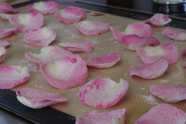 frosted rose petals