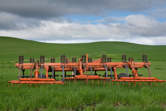 Green Wheat Farm