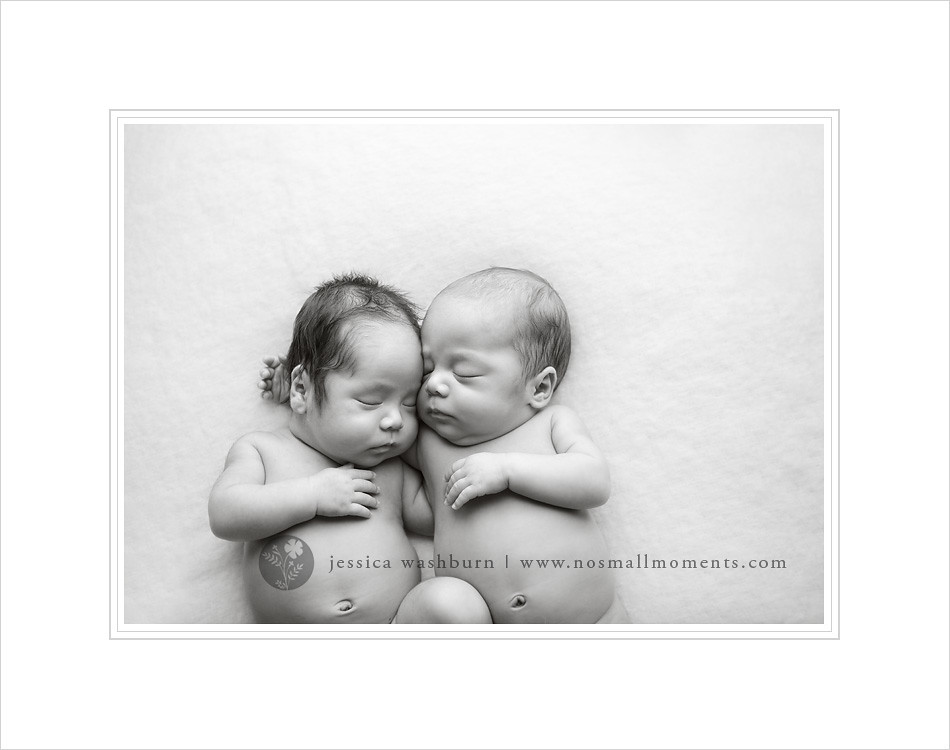 black and white newborn twin photography