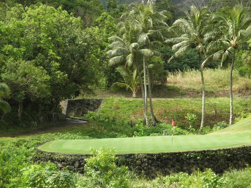 Royal Hawaiian Golf Club 048b
