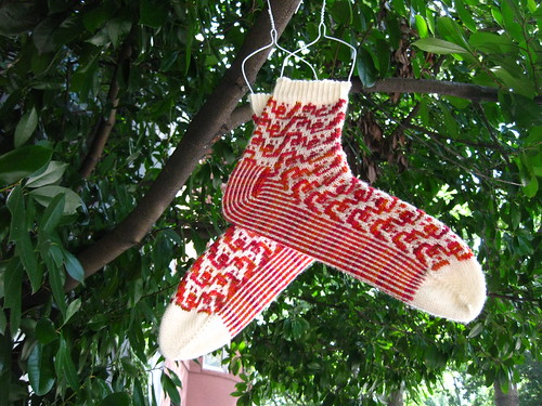 Socks Just Grow on Trees, Right?