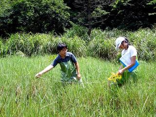 環境信託中心的周招蕊和許惠婷至陽明山擁來進行環境監測