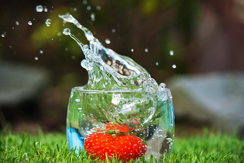 Strawberry Splash. Kuva: Tim Fields / Flickr
