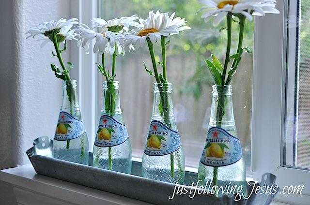 daisies 2.jpg