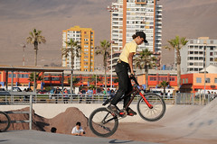 flatland bmx(0.0), bmx racing(0.0), bicycle motocross(1.0), vehicle(1.0), bmx bike(1.0), sports(1.0), freestyle bmx(1.0), sports equipment(1.0), cycle sport(1.0), extreme sport(1.0), stunt performer(1.0), bicycle(1.0),