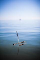 Petit Port stick boat