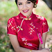 Chinese qipao dress