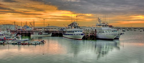 harbor plymouth deaddogseyehdr