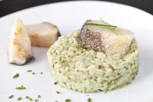 Lluç amb risotto verd