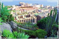 jardin de exotice monaco