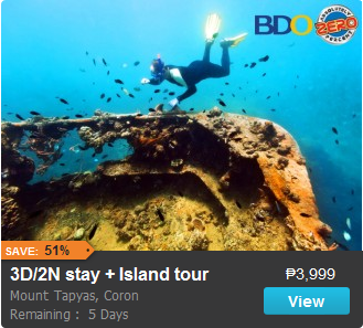 3D/2N Accommodation in Mt Tapyas Coron Promo