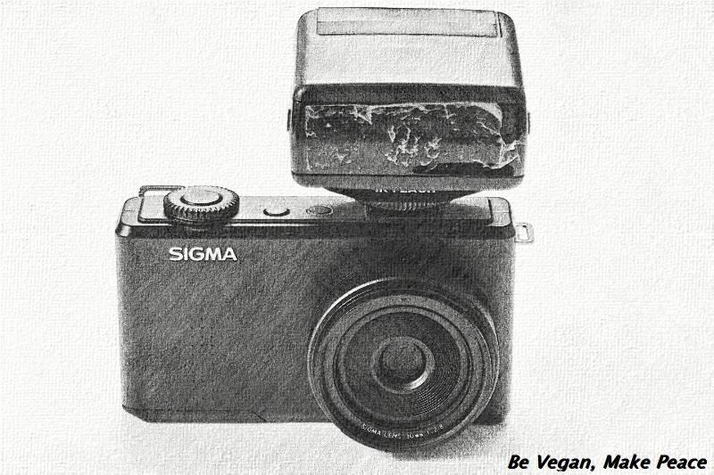 Sigma dp2m