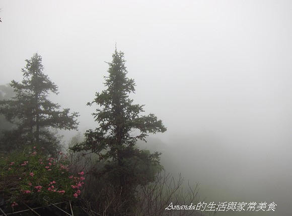 雲也居一-山與雲 (4)