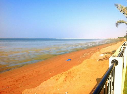 beach water uae