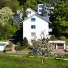 White and green #landscape #switzerland #zurich #irchel