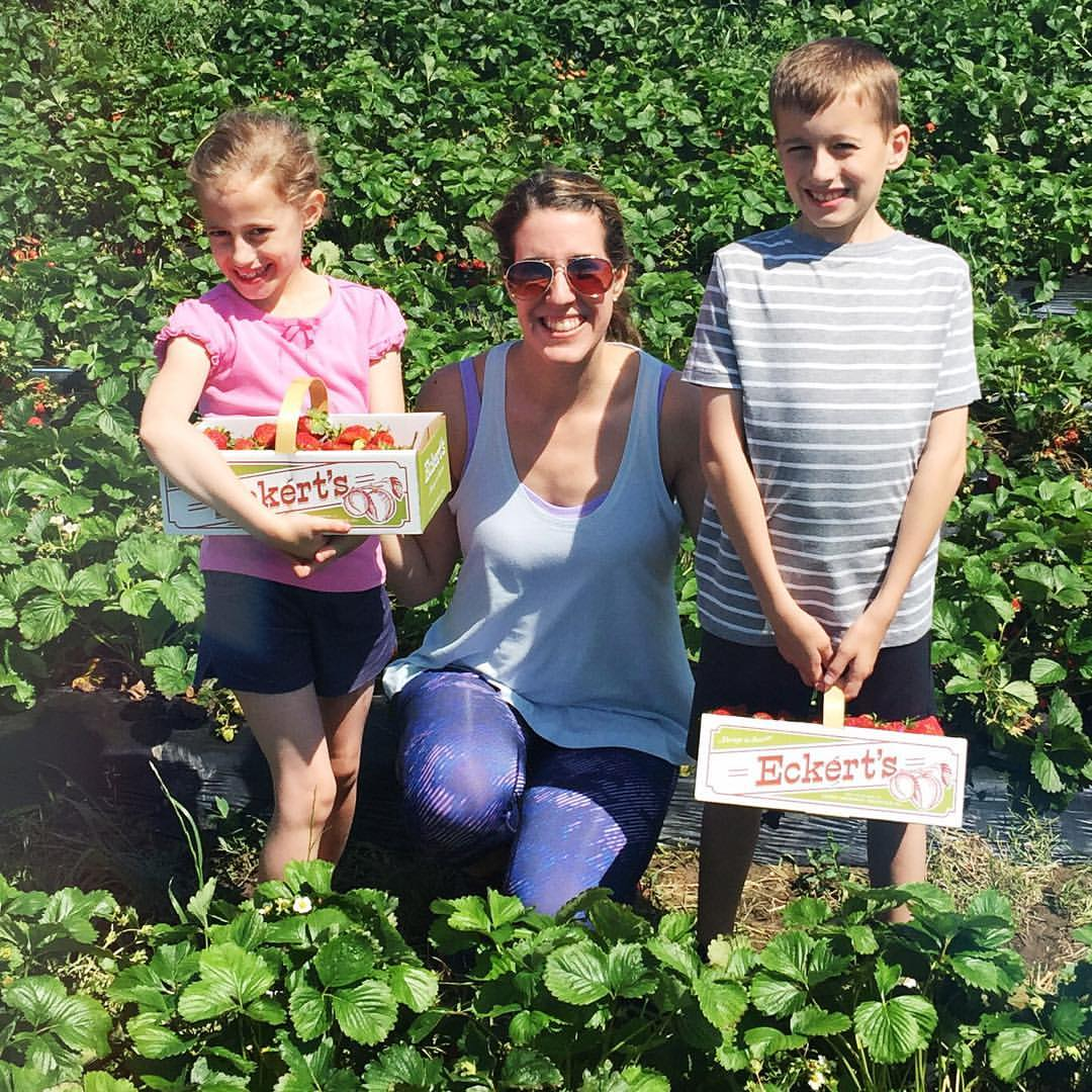 Kids had a half day today, so we headed over to Eckerts to pick some delicious and juicy strawberries! 🍓🍓🍓 Such a fun day with these two, love them so much!! #happymom #strawberrypicking #eckerts