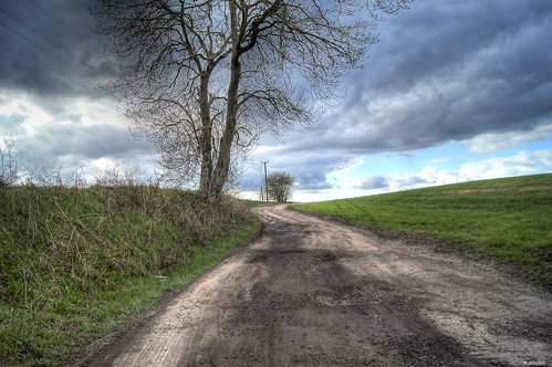 HDR : Winding Road