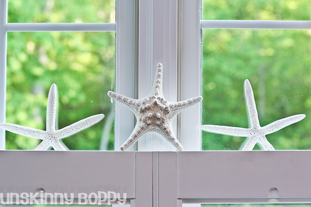 starfish in window