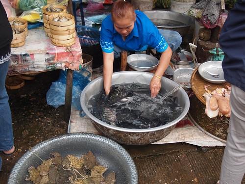 ビエンチャンの市場で活魚販売