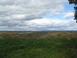 Shenandoah Valley Lands