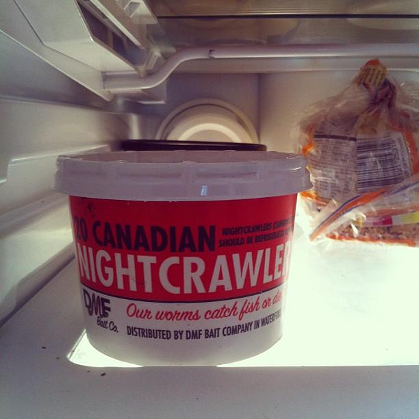 In my fridge...