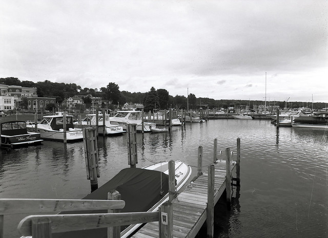 The Harbor.