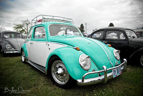 Bug Run