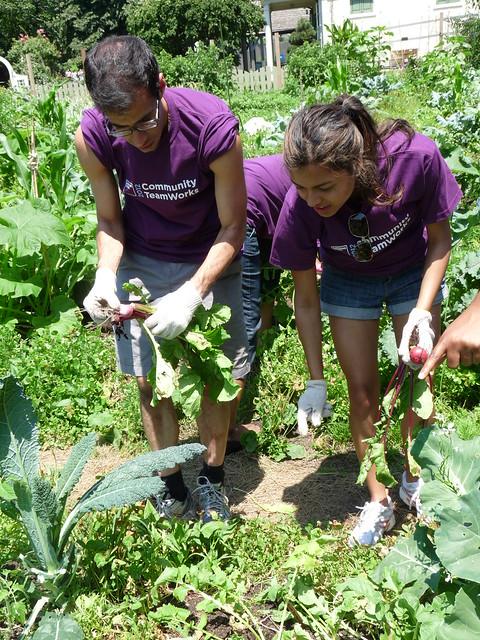 Harvest team. Photo by Kathryn Littlefield.