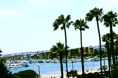 marina del rey...  our view