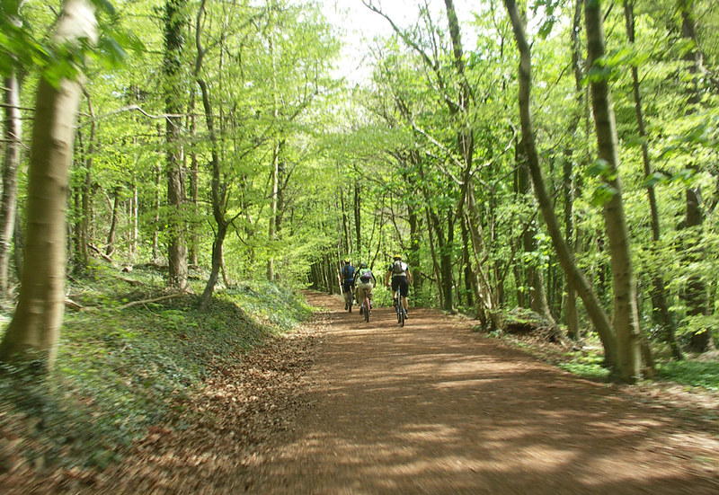 cycle Woods around Castel Coch