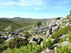 Bergeries de Frauletu : les ruines abandonnées