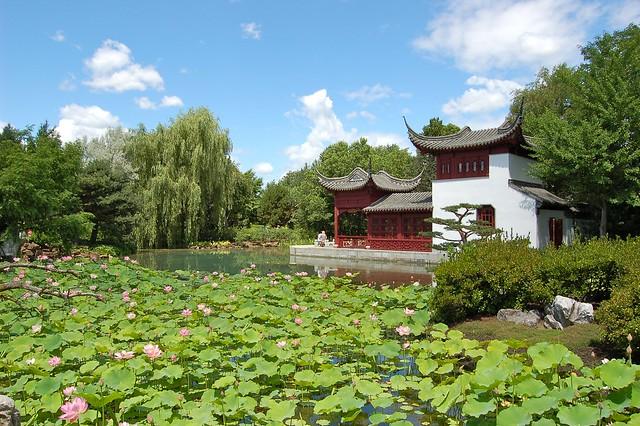Jardin chinois au jardin botanique de montr al explore for Jardin chinois