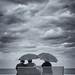 il rumore del mare by Franco Marconi