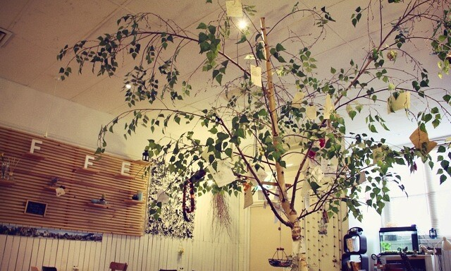 tree_effected