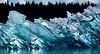 iceberg 1982, Glacier Bay National Park by William D Boehm Images of Nature