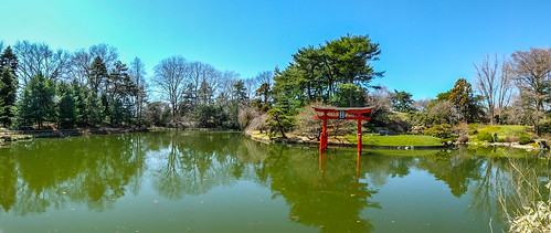 Early Spring view of the Japanese Hill & Pond Garden at Booklyn Botanic Gardens