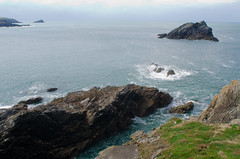 Pentire Head, Newquay, Cornwall by Thomas Tolkien