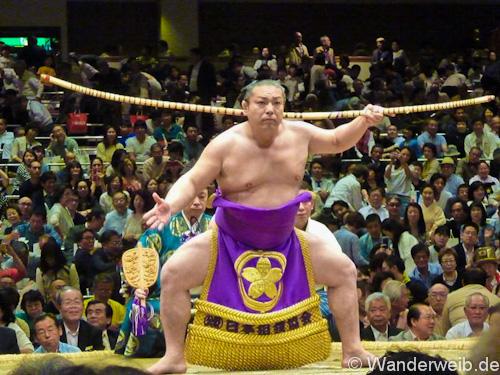 sumo (4 von 5)