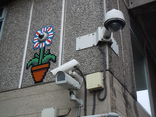 CCTV Nest