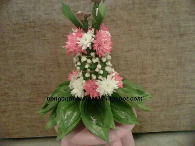 Sirih junjung putih pink Lin, Setiawangsa