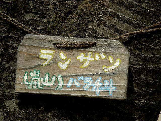 Photo:#2447 Japanese cherry (ランザン) By Nemo's great uncle