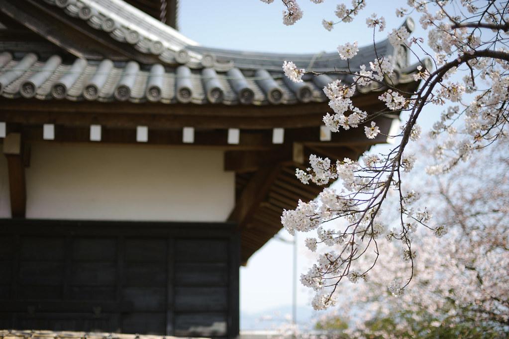 Nara - Koriyama Castle Remains