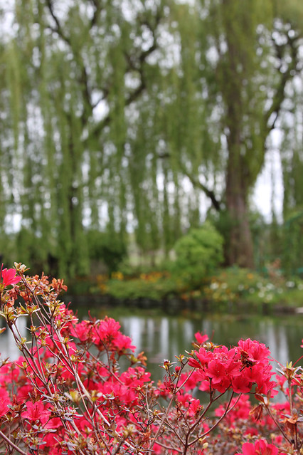 Monet-Giverny6
