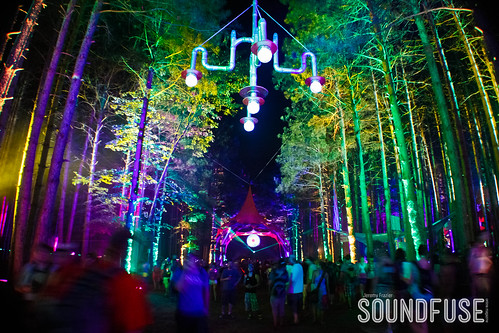 2012 Electric Forest Festival-67.jpg
