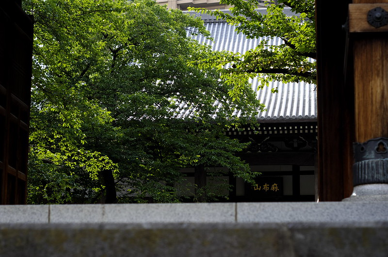 2012-0719-pentax-kx-善福寺-001