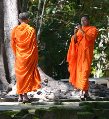 Monks at the overgrown ruins Ta Prohm